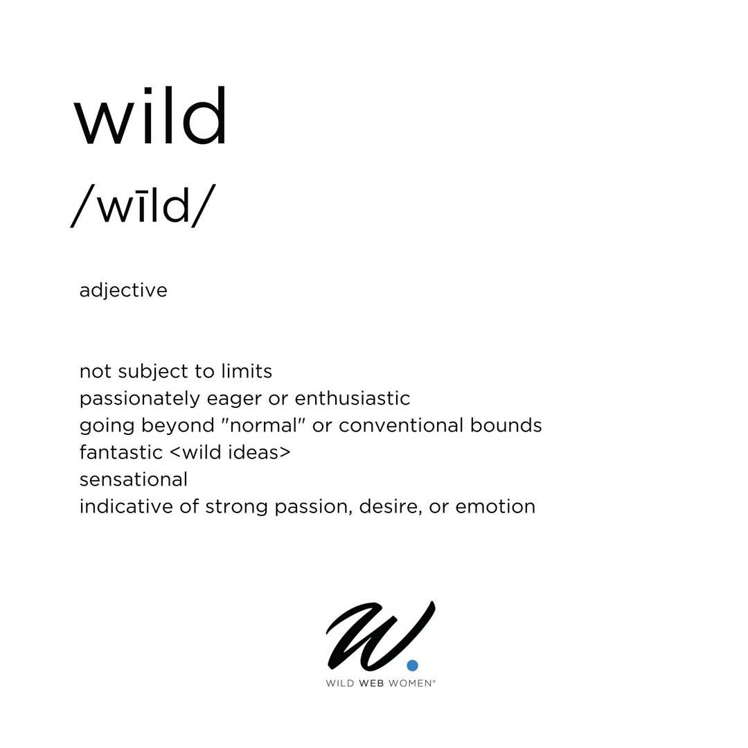 Who is a Wild Web Woman?